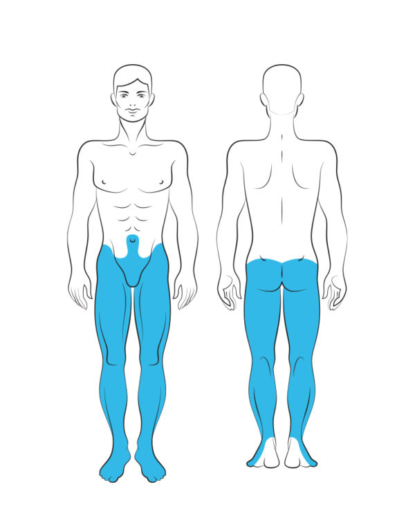 Male Half body Lower Laser Hair Removal - Area Map